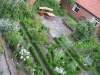 Kräutergarten1