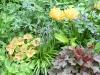 Garten Bielert img_3697-medium