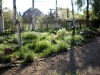 Garten Bork-Frieling