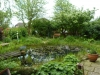 Garten Bork-Frieling-p1040430
