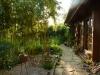 Garten Bork-Frieling-p1040906