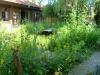 Garten Bork-Frieling-p1060569
