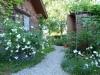 Garten Bork-Frieling-p1060601