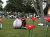 Heilpflanzengarten Celle Sommerfest