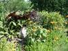 Naturkontaktstation Wathlingen Teichrandbepflanzung