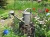 Garten Rückert img_2643
